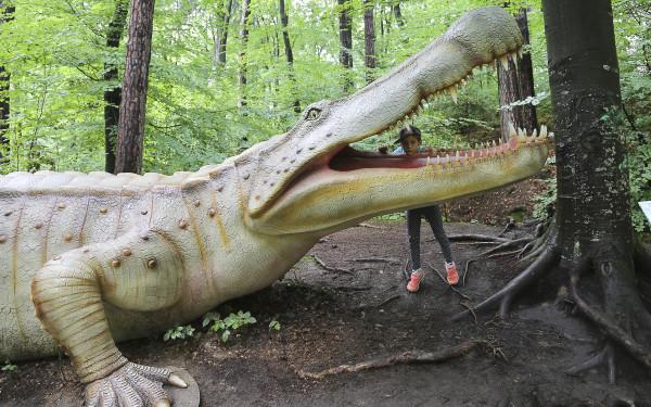 Dino_Park(12)