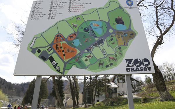harta zoo